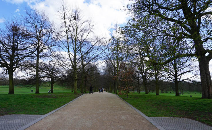 Pathway through the trees in Greenwich Park, England.