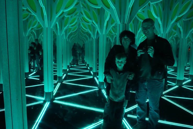Numbers in Nature: A Mirror Maze, Museum of Science and Industry, Chicago.