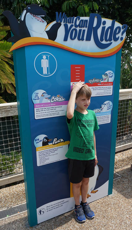 Getting measured to see if he meets the height requirements to ride the roller coasters at SeaWorld Orlando.